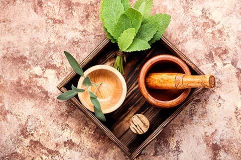 Tratamiento con Plantas Medicinales